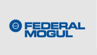 Federal Mogul Brand